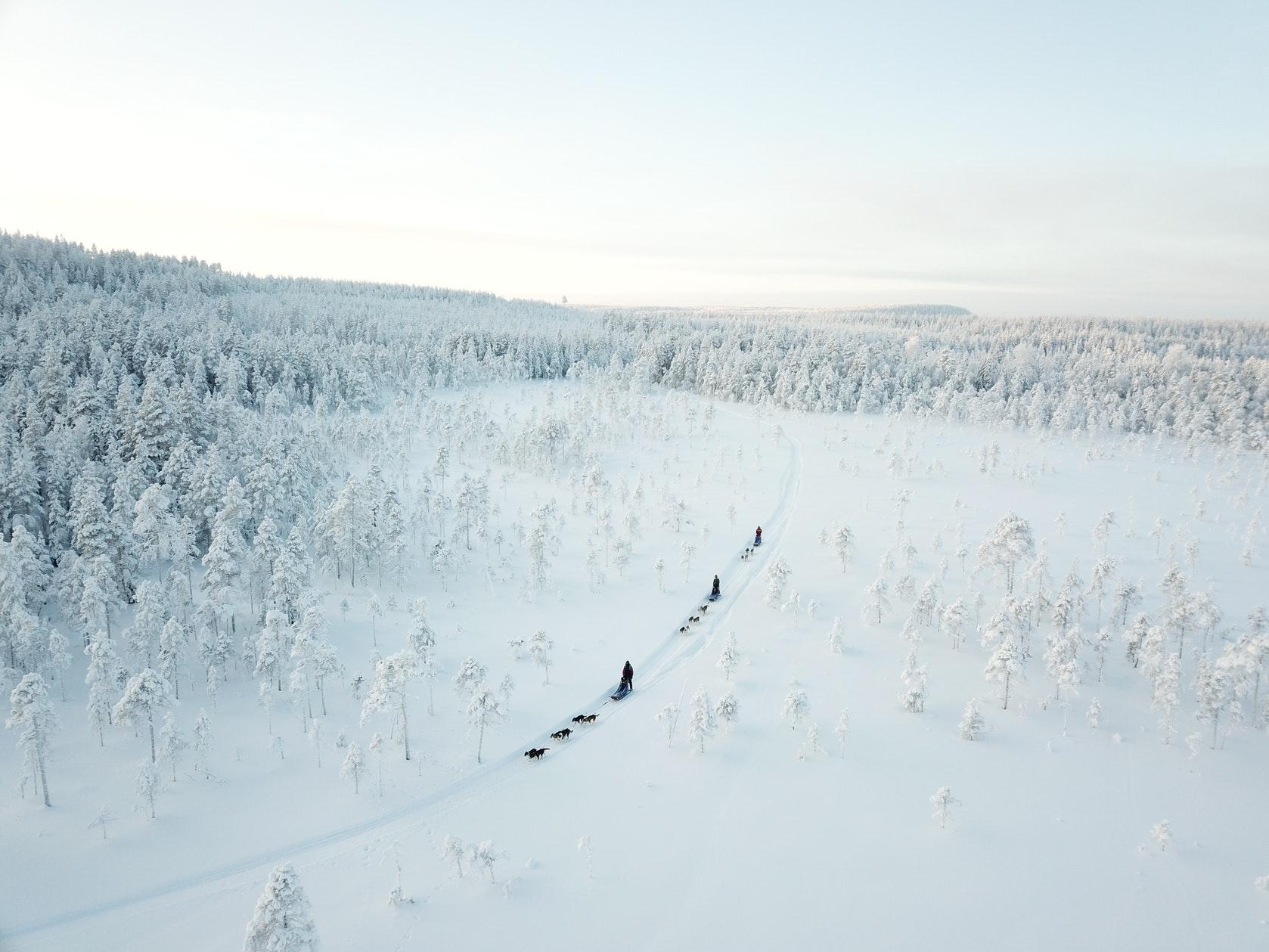 wintertour_2dayhuskytour_1