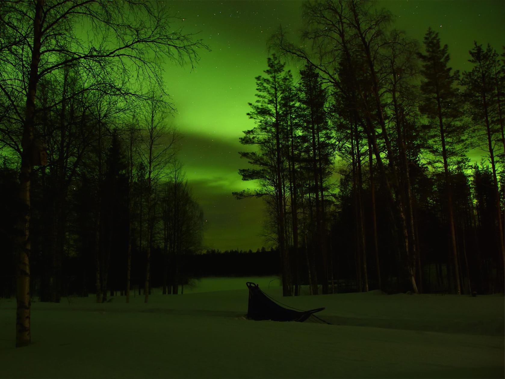 wintertour_2dayhuskytour_7