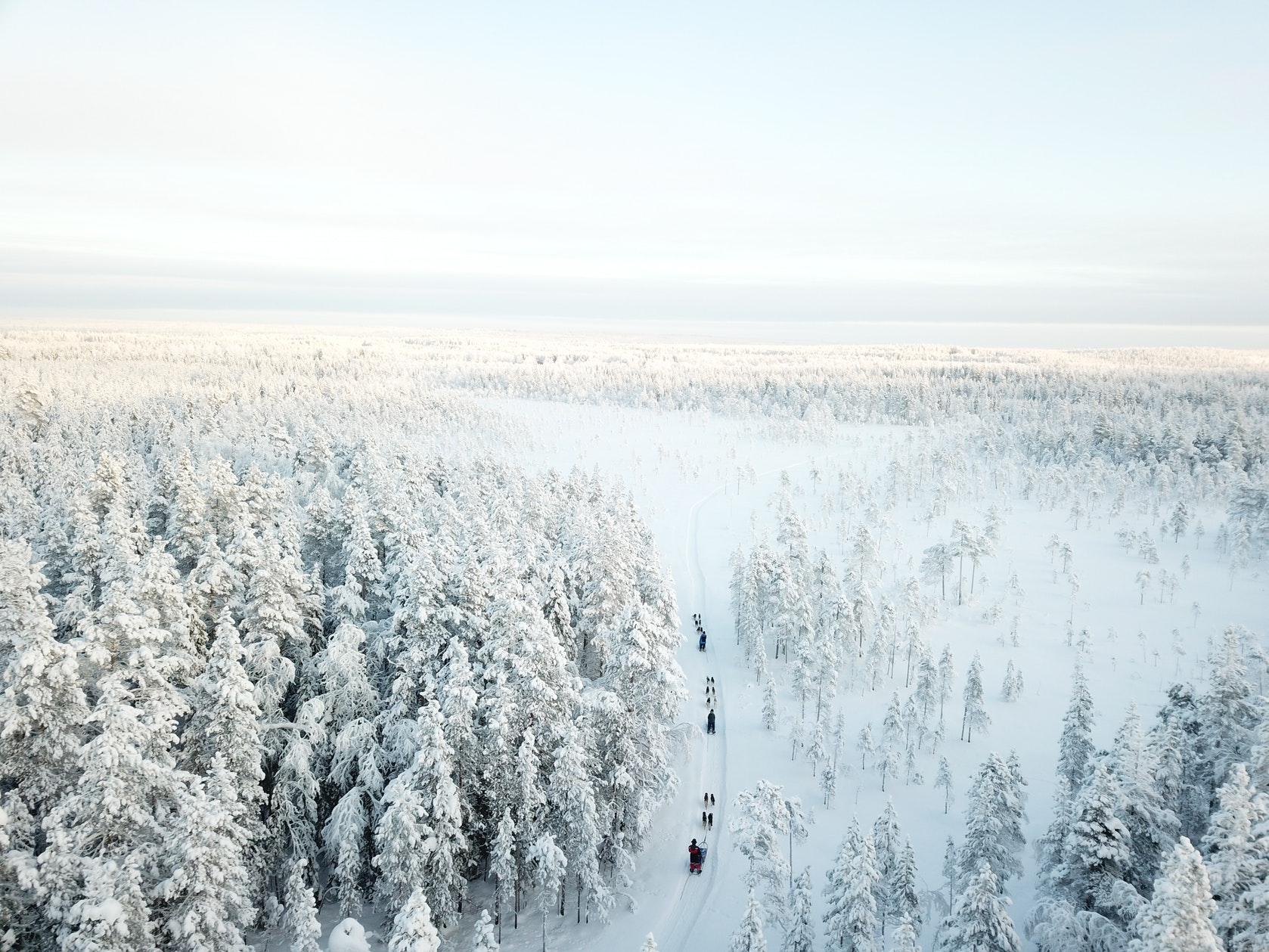 wintertour_3dayhuskytour_3