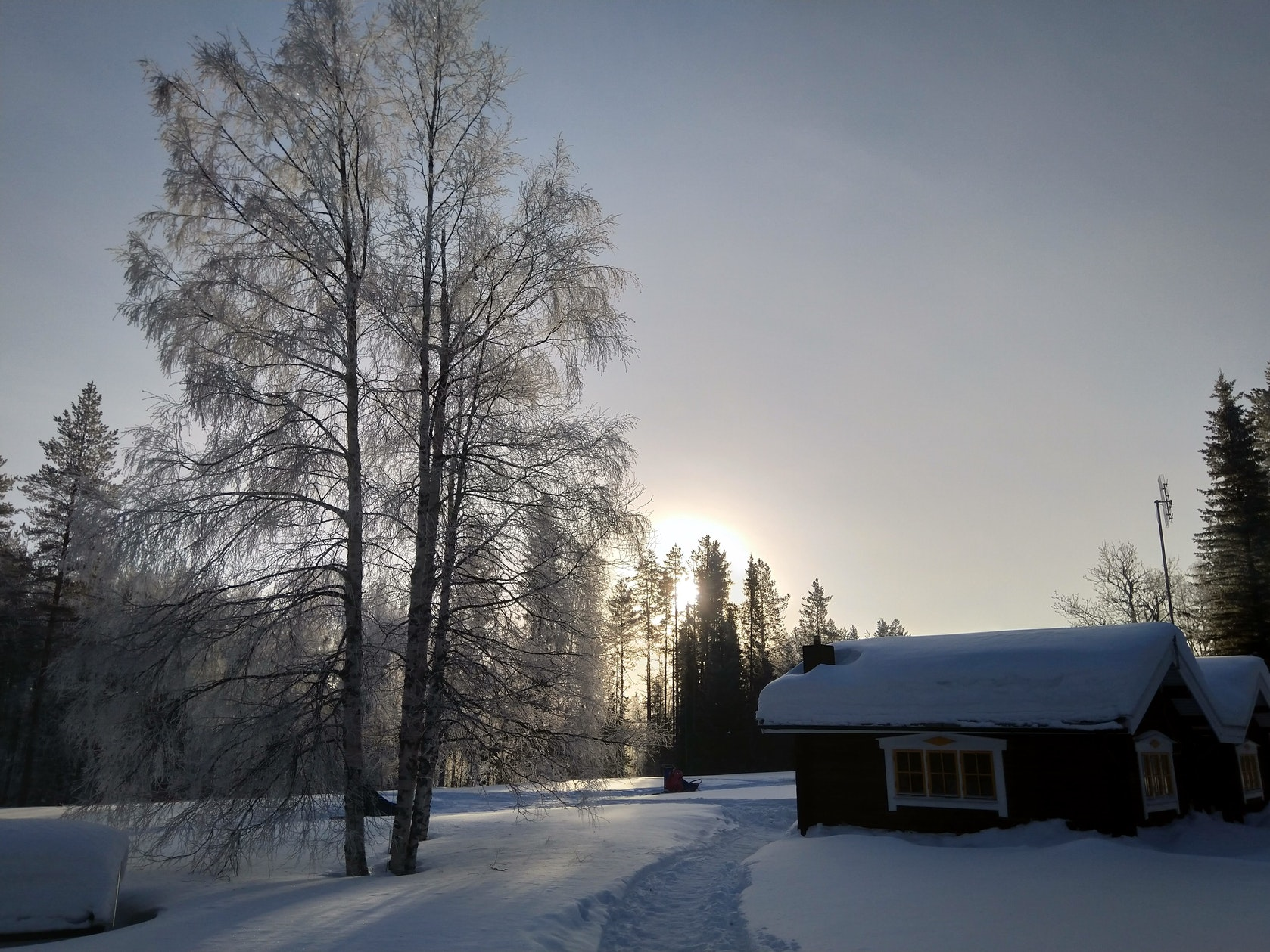 wintertour_3dayhuskytour_4
