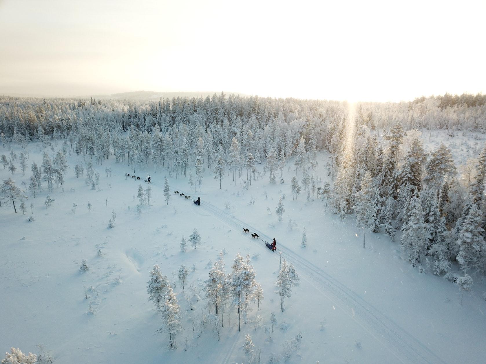 wintertour_halfdayhuskytour_2