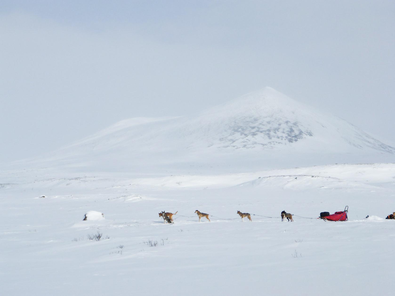 wintertour_mountaintour_arctic_8
