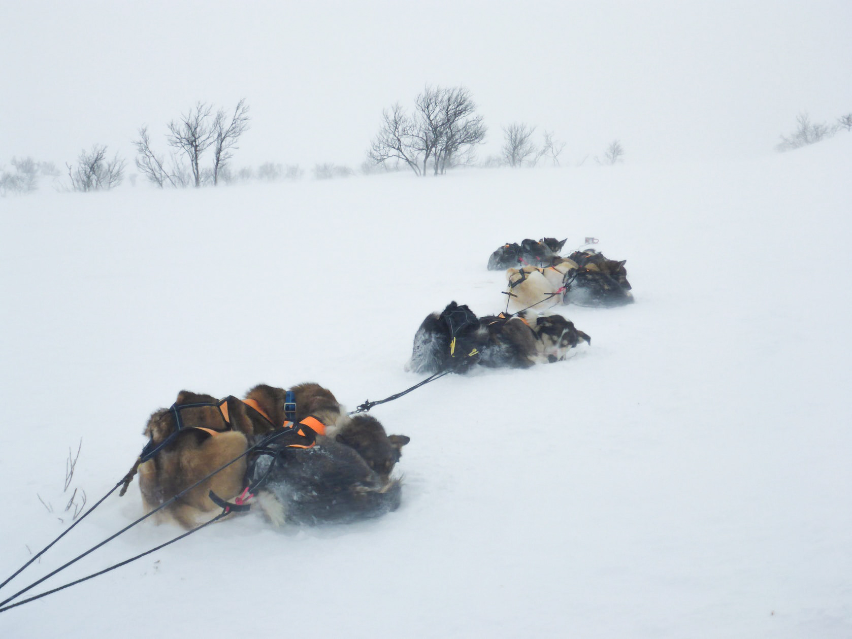 wintertour_mountaintour_expedition_4