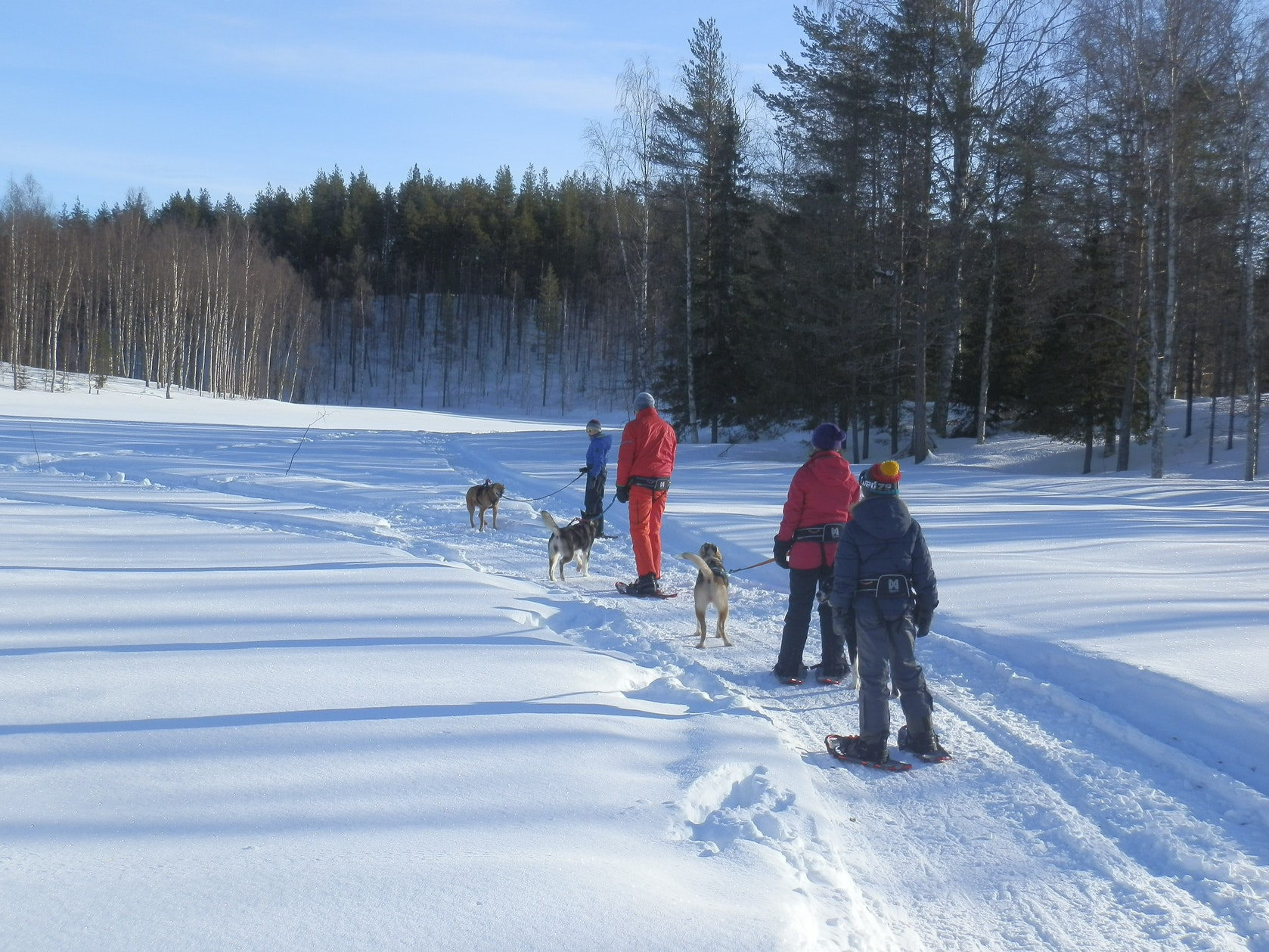 wintertour_snowsleddingsnowshoewalk_3