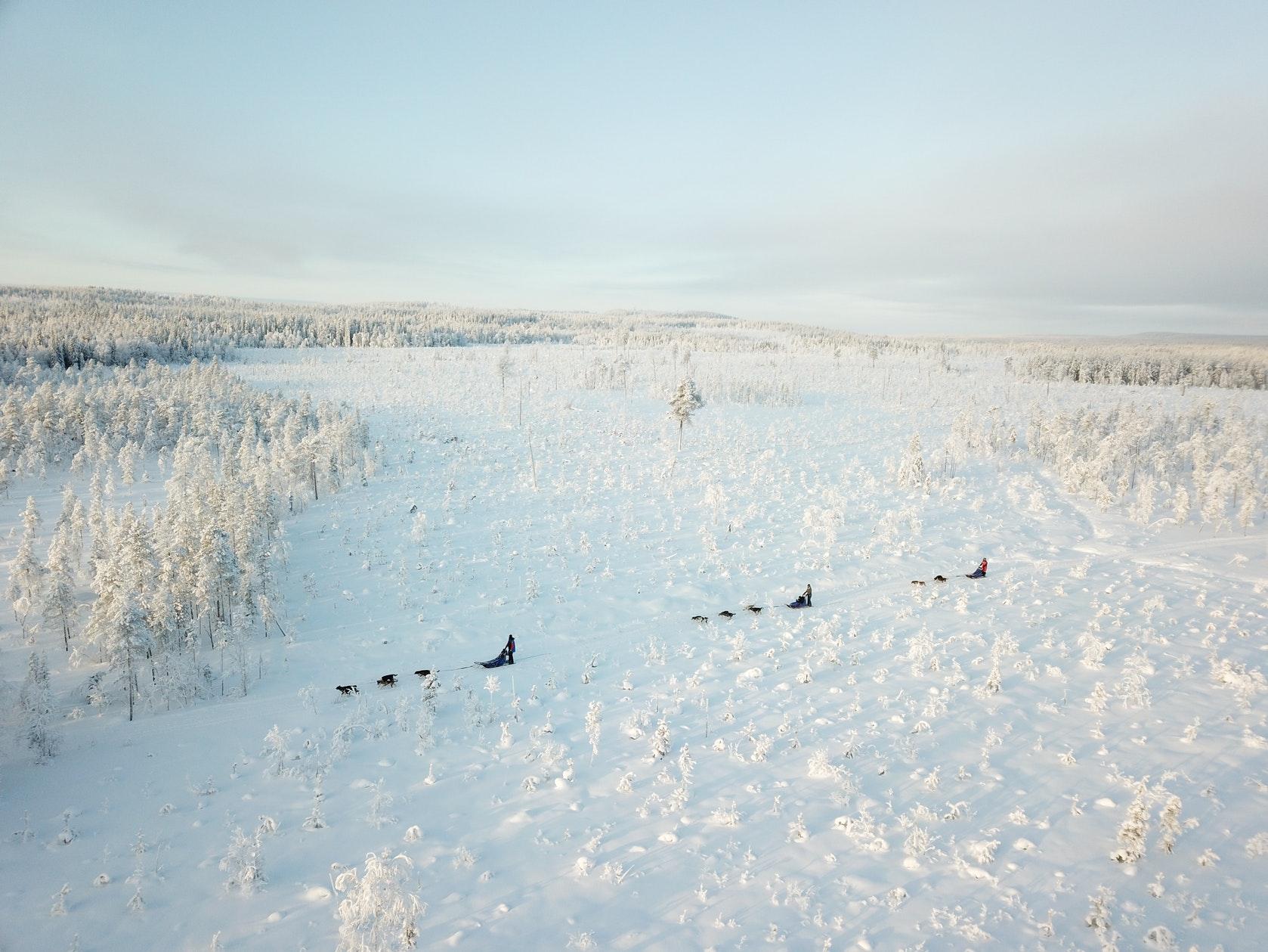 wintertour_snowsleddingsnowshoewalk_4